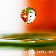 Drop & Splash (6)