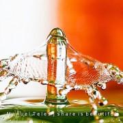 Drop & Splash (8)